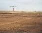 Terrain agricole à Kairouan à vendre