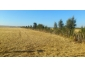 terrain agricole à vendre à Bizerte