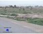 Vendre à kairouan terrain agricole 4