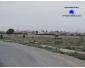 Vendre à kairouan terrain agricole 3
