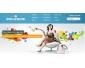 Promotion création site web