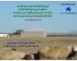 Terrain agricole a sidi mahmoud kairouan à vendre 2
