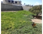 Terrain nu à la Soukra  à vendre