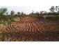 Terrain pour construction à bennane à vendre