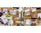 Comprendre et Pratiquer les Réseaux Sociaux : LinkedIn, Facebook, Twit