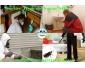 Service Hygiène Najem éliminer les cafards