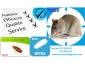Société 3D traitement cafard RATS SOURIS