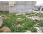 Terrain a vendre a Mohammadia Tunisie