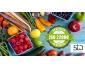 Responsable Management de la Sécurité Alimentaire ISO 22000
