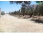 ce joli terrain à kélibia Tunisie